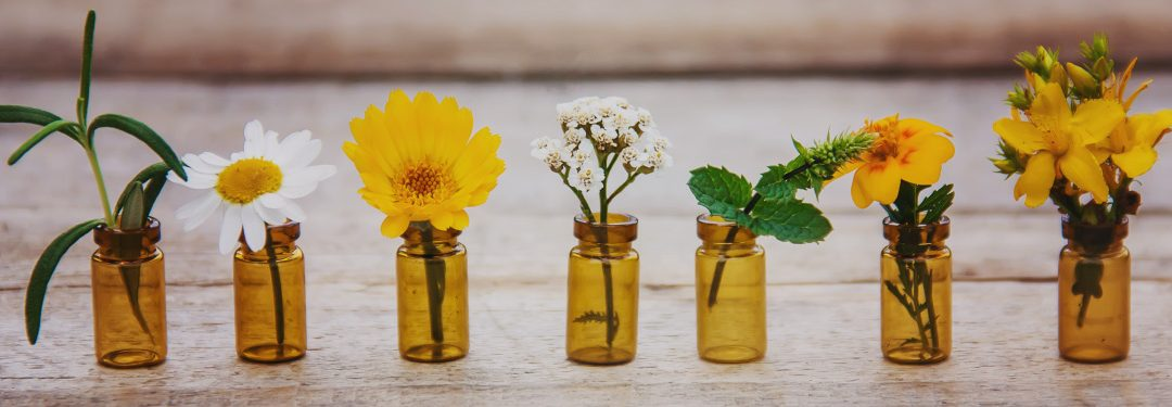Essential Oils That Protect Home from Germs and Viruses